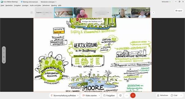 Bildschirmfoto der Webkonferenz